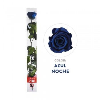 Rosa azul preservada - Envío gratis en 24 horas