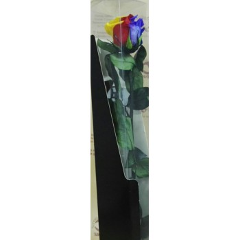 Rosa arcoiris preservada - Envío gratis en 24 horas