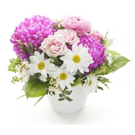 Centro de Flores Leiden
